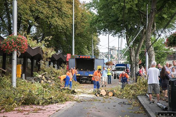 Škody po štvrtkovej víchrici presiahli 200-tisíc eur
